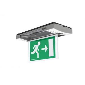 Eaton Blessing LED, opbouw, permanent, DZ signalering, auto test, kleur wit