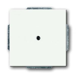 ABB Busch-Jaeger Future linear bedieningselement Blindplaat Centraalplaat Wit 2CKA001710A3873