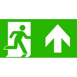 Van Lien Optilux pictogram Vluchtweg Rechtdoor/naar boven 12232651