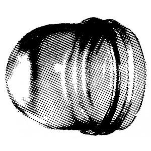 Peha Beschermglas voor lichtsignaal hoogte 35 mm, helder