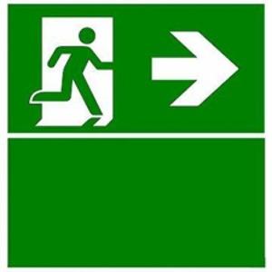 Eaton Blessing BL ISO Perspexplaat Evoled S muurmontage, pijl rechts+groen vlak
