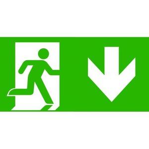 Van Lien Optilux pictogram Vluchtweg Rechtdoor/naar boven 12232658