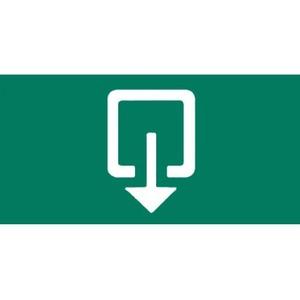 Van Lien pictogram Uitgang Rechtdoor/naar boven 12532012
