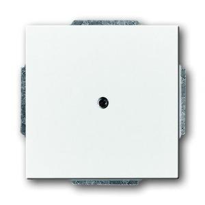 ABB Busch-Jaeger Axcent bedieningselement Blindplaat Centraalplaat Wit 2CKA001710A3161