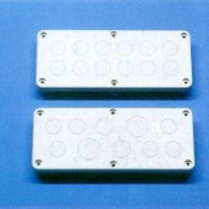 Rittal KL Wartelpl 220x90 12xPG13,5 R7035