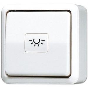 Jung Impulsdrukker 10 A 250 V ~ (zonder symbool)
