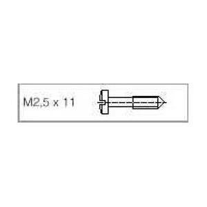 Rittal RP SCHROEVEN M2.5X11