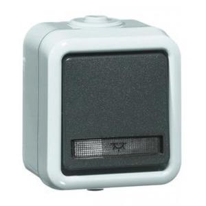 Peha Pulsdrukker 10A, 250V~, div.symbolen 1-polig met maakcontact, grijs