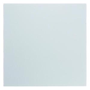 Berker Blindplaat Berker S.1/B.3/B.7 Glas polar wit, glanzend